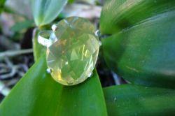 Anel de Prata 950 com Green Gold Oval Natural